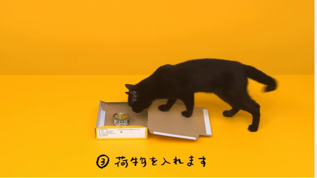 黒猫を使った動画広告