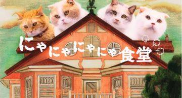 ブランド認知を狙ったau WALLETの猫ドラマ「にゃにゃにゃにゃ食堂」が猫好きにはたまらない!?